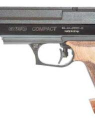 09-17-15-01-Gamo-Compact
